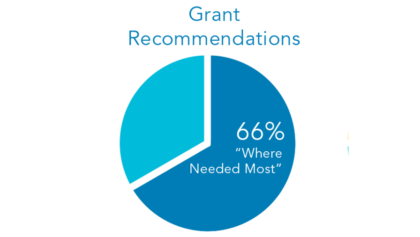 grant recommendations in 2020
