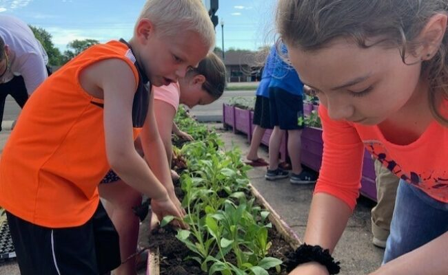 Local kids practice the art of gardening earlier this summer through  EmBe's daycare program.